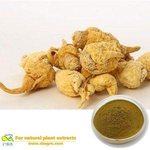 100% Natural Maca Root Extract,Maca Root Powder Extract,Maca Root P.E.
