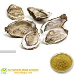 100% Natural Oyster Extract Powder