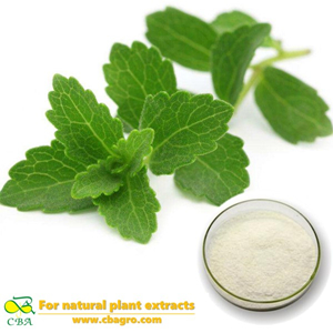 Stevia Sugar | Most Popular Pure Nature Suger