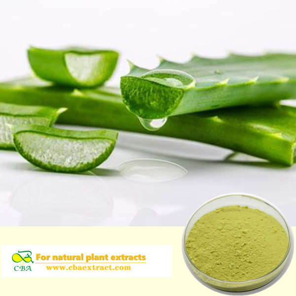 Aloe vera extract powder Aloin plant extract