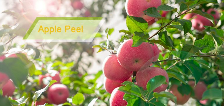 Should You Peel Your Apple or Not?
