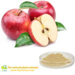 Red Apple fruit drink powder reeze dried apple powder for beverage and drinking and weight loss