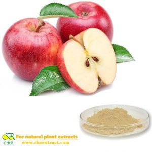 Apple fruit drink powder