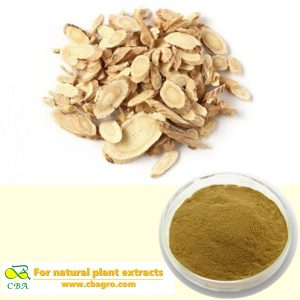 Astragalus Root Extract Anti-aging Astragalus Root Extract 98% Cycloastragenol
