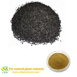 Black Sesame Extract Natural Organic Semen Sesami Nigrum Extract Powder Black Sesame powder