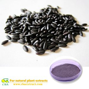 Black rice powder
