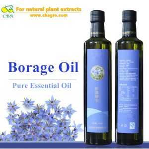 Borage oil Natural Pure Borage Essential Oil