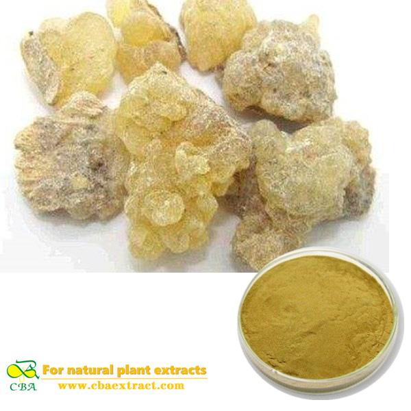 Boswellin Extract Boswellic Acid frankincense extractfrankincense p.e.frankincenseBoswellia Serrata Extract