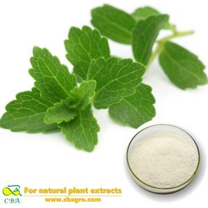 CBA 2018 High quality stevia extract