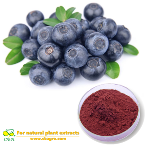 CBA Factory Competitive Bilberry Extract