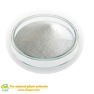CBA Manufacture Supply Health Isomalt On Hot Sale