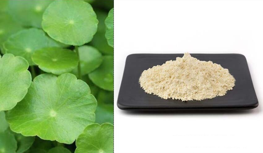 Centella Asiatica Leaf Extract