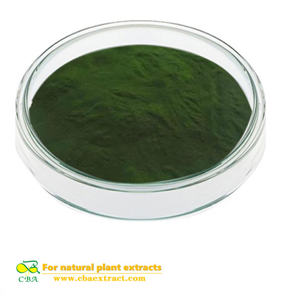 Food grade organic chlorella spirulina powder use for weight loss