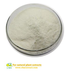High quality 100% natural USP 36 Standard chondroitin sodium chondroitin sulfate powder