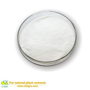 Competitive Price Food Additive-Casein phosphopeptides