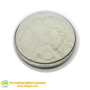 Competitive Price Food Additive -Nattokinase