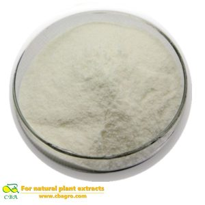Competitive Price Food Additive-Papain