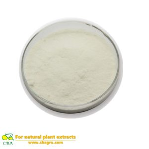 Competitive Price Food Additive -Soy Lecithin or Lecithin High Potency