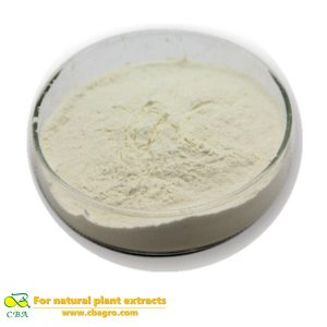 Competitive Price Food Additive -Soybean protein