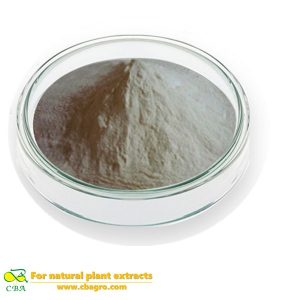Competitive Price Food Additive -peanut protein