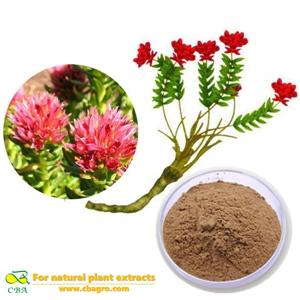 Cosmetics Materials