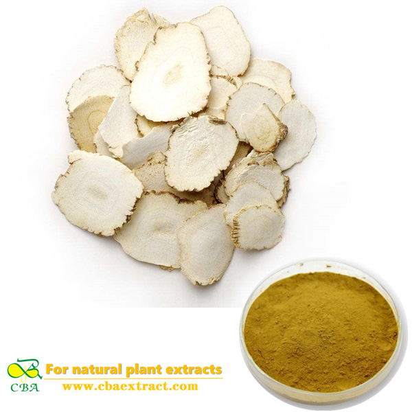 Supply Angelica sinensis Dong Quai root extract Dong Quai extract ligustilide 1% Dahurian Angelica Root Extract