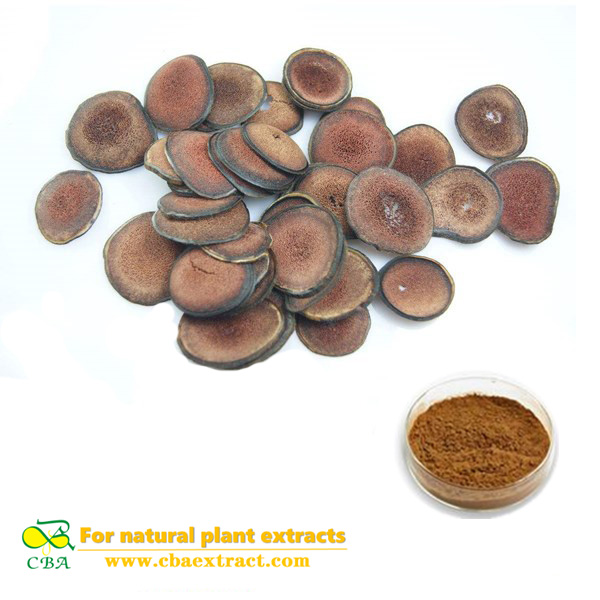 CBA high quality deer antler velvet extract powder no additive