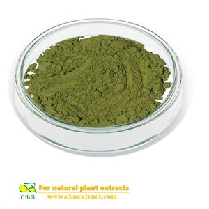100% natural euglena extract powder