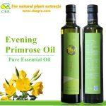 Wholesale Evening primrose organic pure essential oil evening primrose plant extract oil