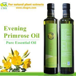 Evening primrose essential oil evening primrose plant extract oil