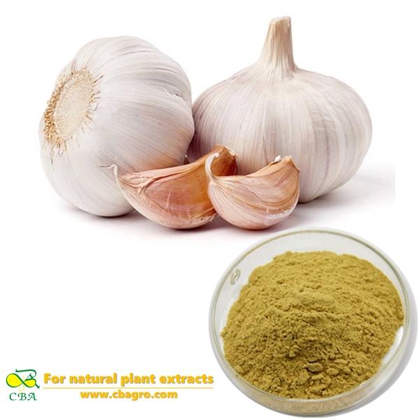 natural garlic extract