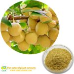 CBA Organic Ginkgo Biloba/Gingko Biloba Leaves Extract Powder