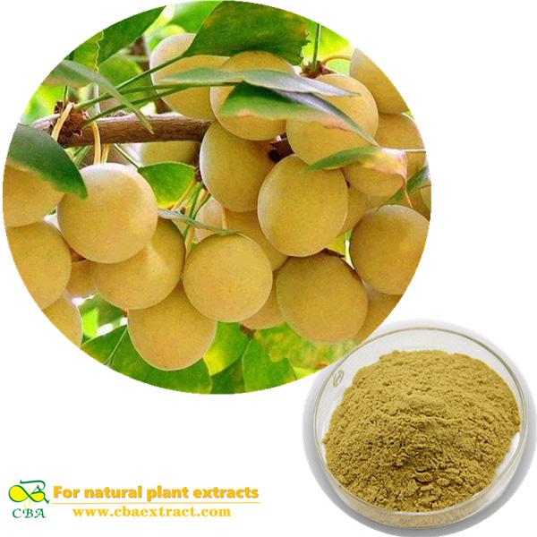 CBA Organic Ginkgo Biloba Leaves Extract Powder