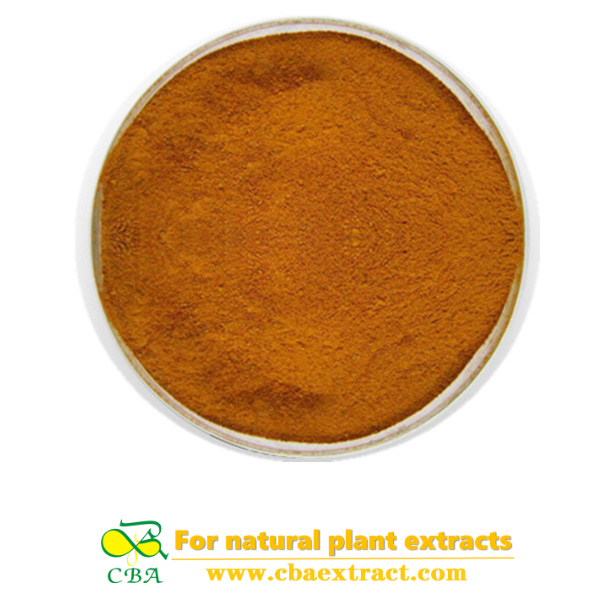 Health care product Earthworm Protein powder Good Price