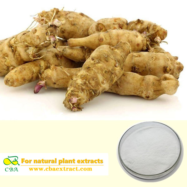 Jerusalem artichoke extract Hot sale Natural fructan Jerusalem artichoke extract Inulin 90% inulin powder