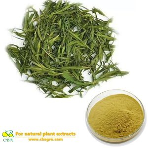Herbal Extract Bamboo Leaf Extract Common Lophatherum Herb extract
