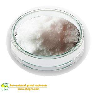 High Quality 100% Natural Stachyose Powder