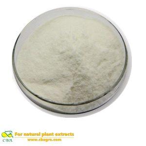 High quality 100% natural USP 36 Standard chondroitin sodium chondroitin sulfate powder