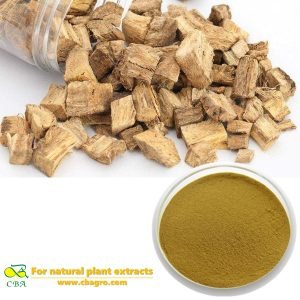 High quality Pueraria Lobata Radix Puerariae Lobed Kudzuvine Root Extract white kwao krua extract puerarin kudzuvine root extract