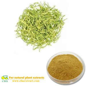 Honey Suckle Flowers Extract Japanese Honeysuckle Flower Bud Extract Flos Lonicerae extract Chlorogenic Acid