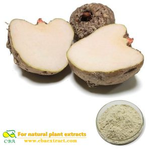 Konjac powder