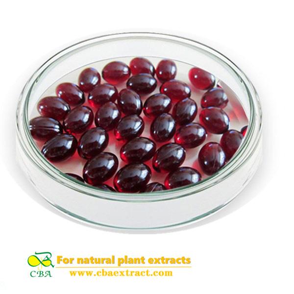 best quality pure Antarctic krill fish oil