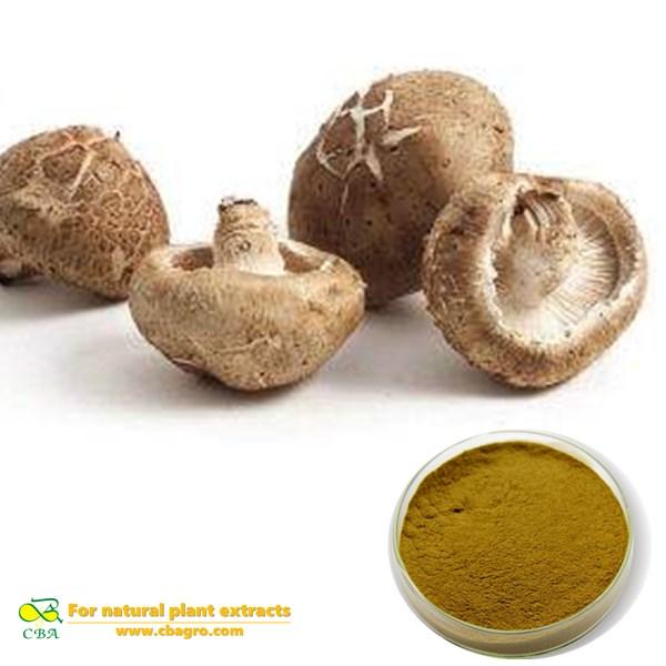 Lentinus Edodes Extract Shiitake Mushroom Extract Lentinan