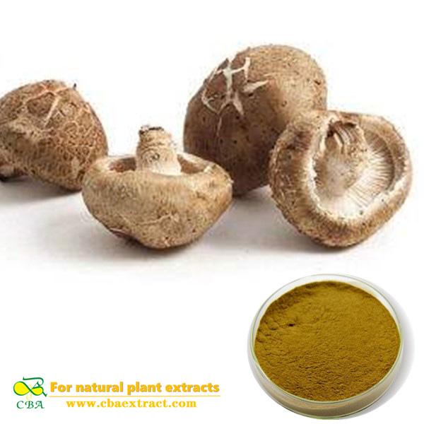 Shiitake Mushroom Extract