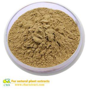 High Purity Earthworm Extract Lumbrokinase