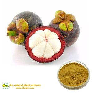 Mangosteen Extract Mangosteen P.Emangosteen fruit powderMangosteen extract 10%-40% Mangostin Mangosteen Extract