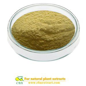 Manufacturer Supply Best Quality Vitamin B12