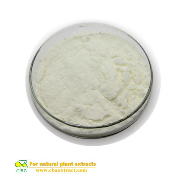 Competitive Price Food Additive Nattokinase
