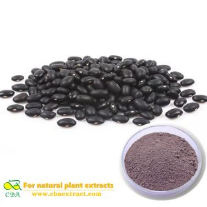Herbal Extract Black Bean Anthocyanin 5% - 25% Black Bean Hull Extract Black soybean powder extract