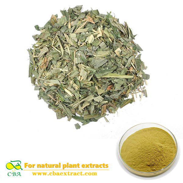Natural Plant Extract Bamboo Leaf Flavonoids, Herbal Extract